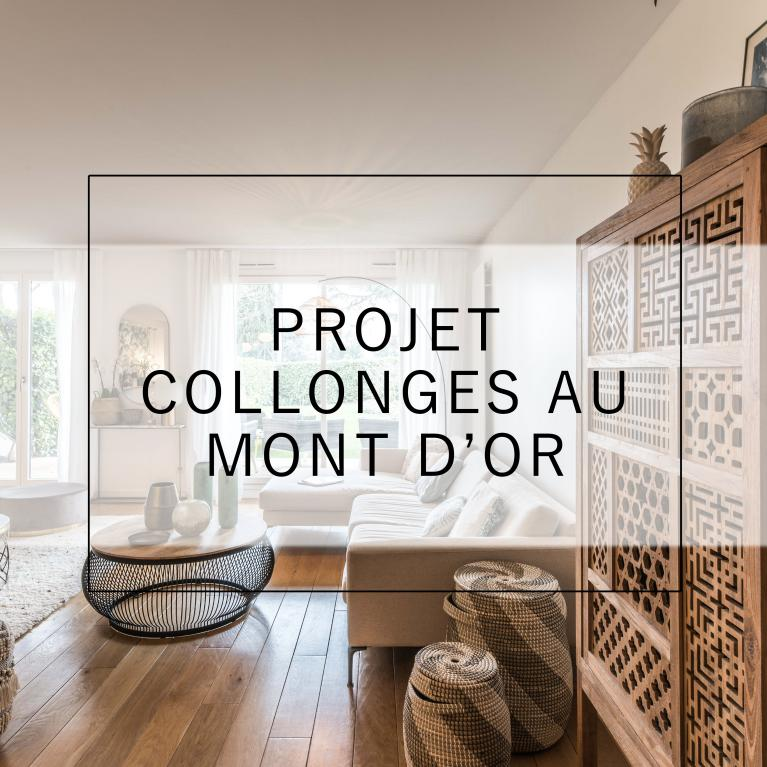 Décembre 2018 - Renovation App Collonge-au-mont-d'or